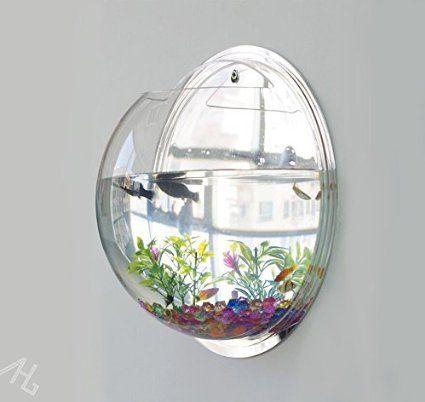 Aquarium ou porte plante mural mural bocal poissons for Mini aquarium boule