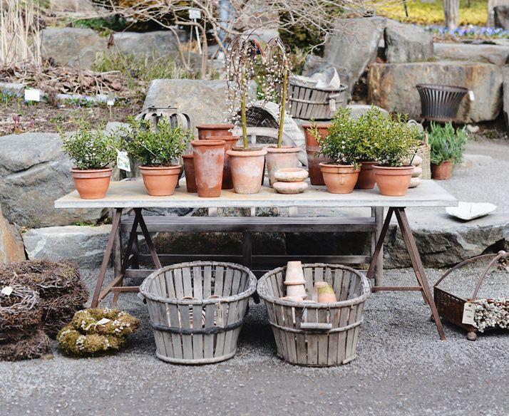 Trädgårdsbord I Zetas Trädgård