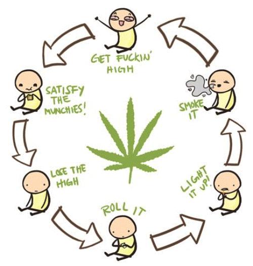 The Circle of Weed Cartoon Fudgin funny! )) Pinterest