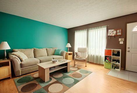 65 años protegiendo y decorando superficies #pinturas #decoracion