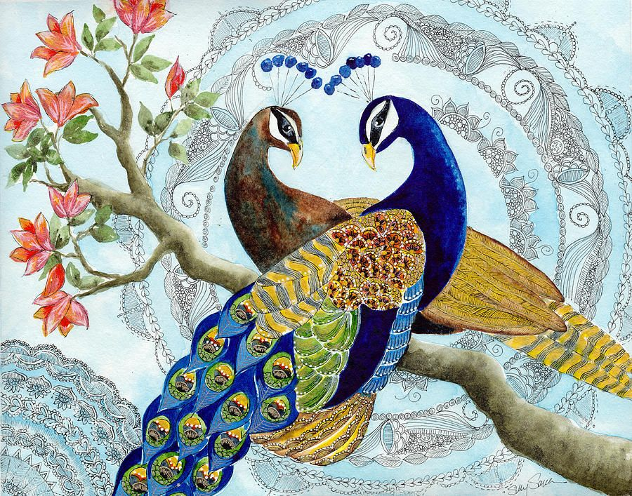 Peacock Paintings For Sale Fine Art America