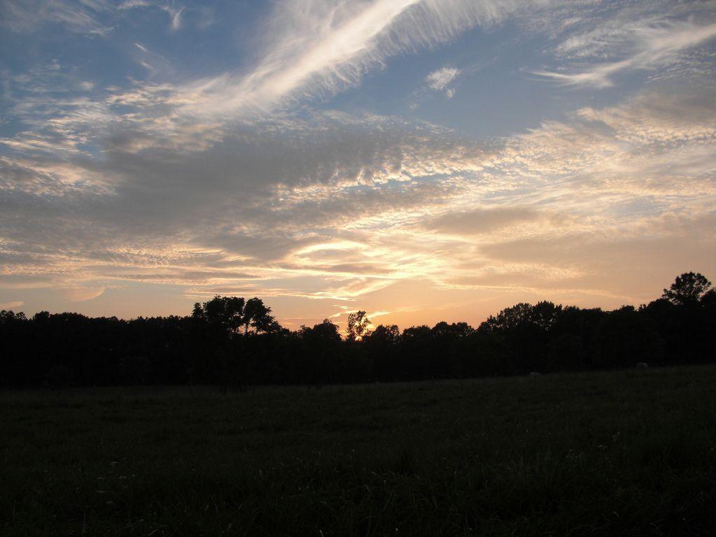 Rikki's Refuge  Life Unlimited of Virginia, Inc.  10910 Barr Lane  Rapidan, VA. 22733  (540)-854-0870  mail@rikkisrefuge.org  www.rikkisrefuge.org  https://www.facebook.com/RikkisRefuge
