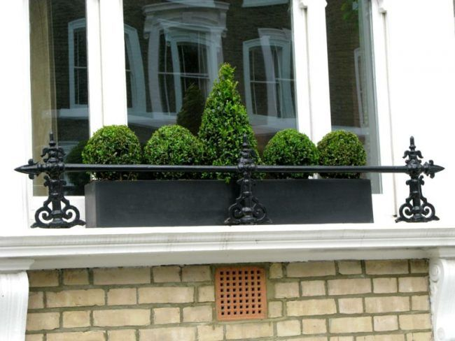sommer fenster metall blumenkasten schwarz buchsbaum pflanzen ...