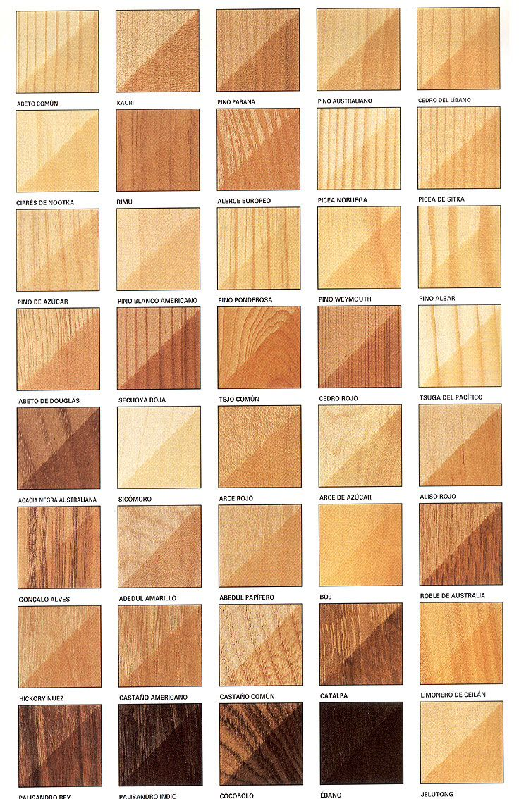 Tipos de madera ideas for the house types of wood - Tipos de barnices para madera ...