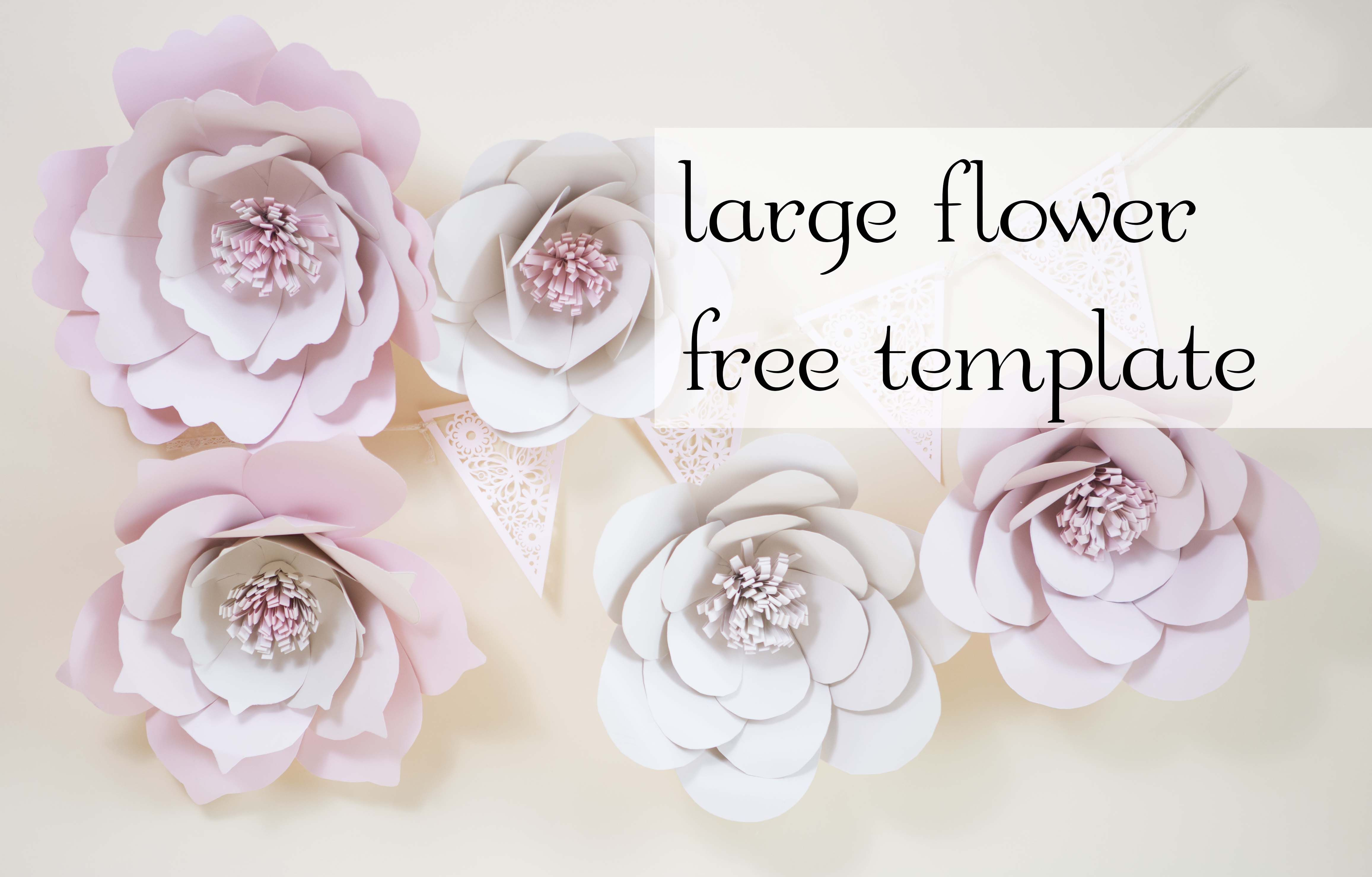 Giant Paper Flowers Free Template Free Paper Flower Templates