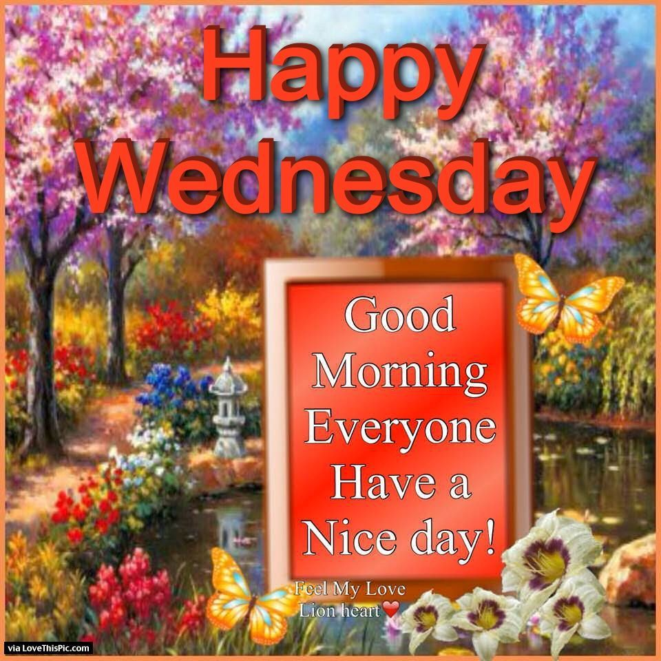 Good Morning Everyone Band : Happy wednesday good morning everyone have a nice day