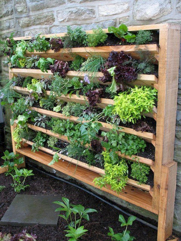 Comment Faire Un Beau Jardin the pros and cons of vertical gardening   jardins verticaux