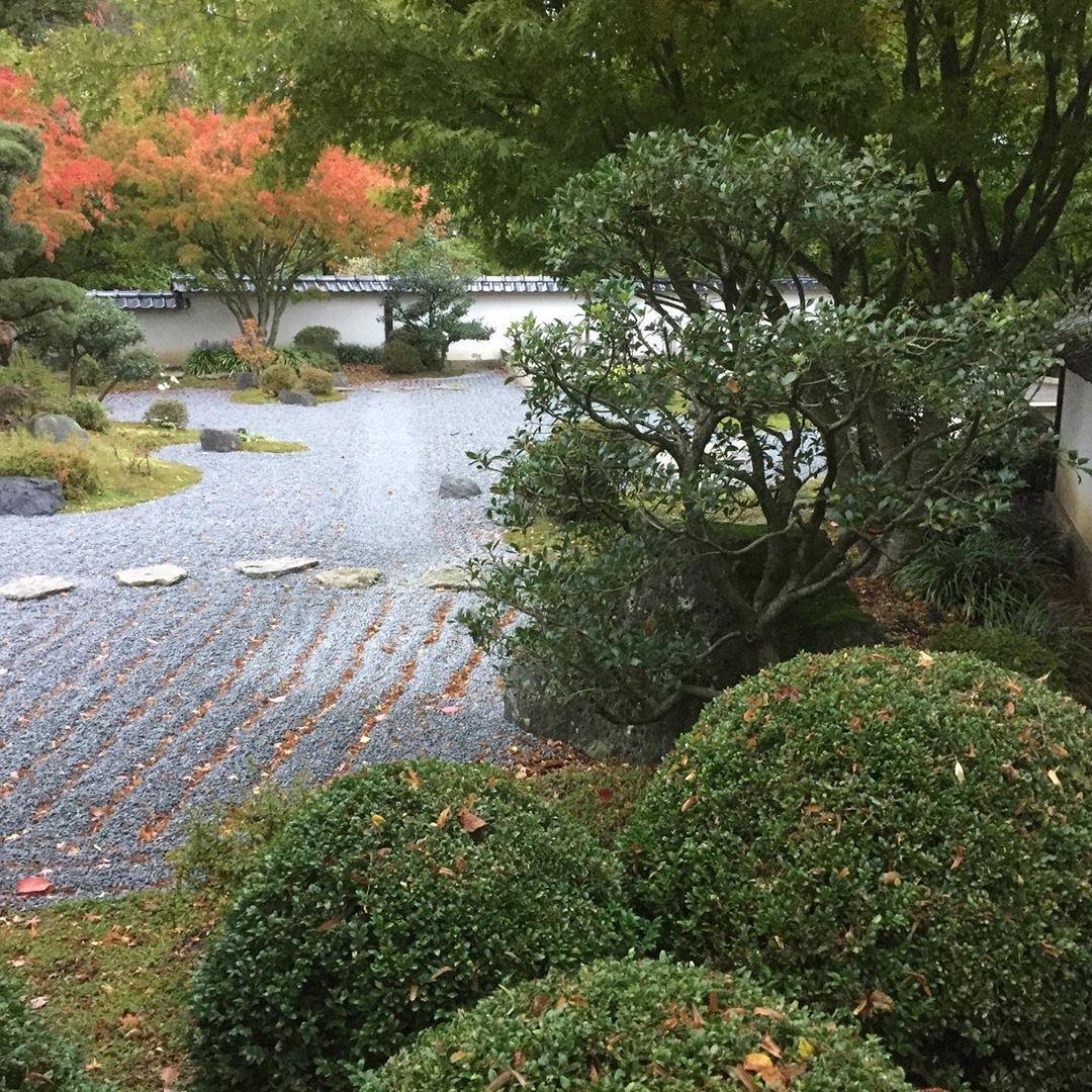 Japanischer Garten Japanischergarten Bielefeld Bethel Japanesegarden Herbst Autumn Erholung Ruhe Stille Inspiration Japanischer Garten Garten Japan