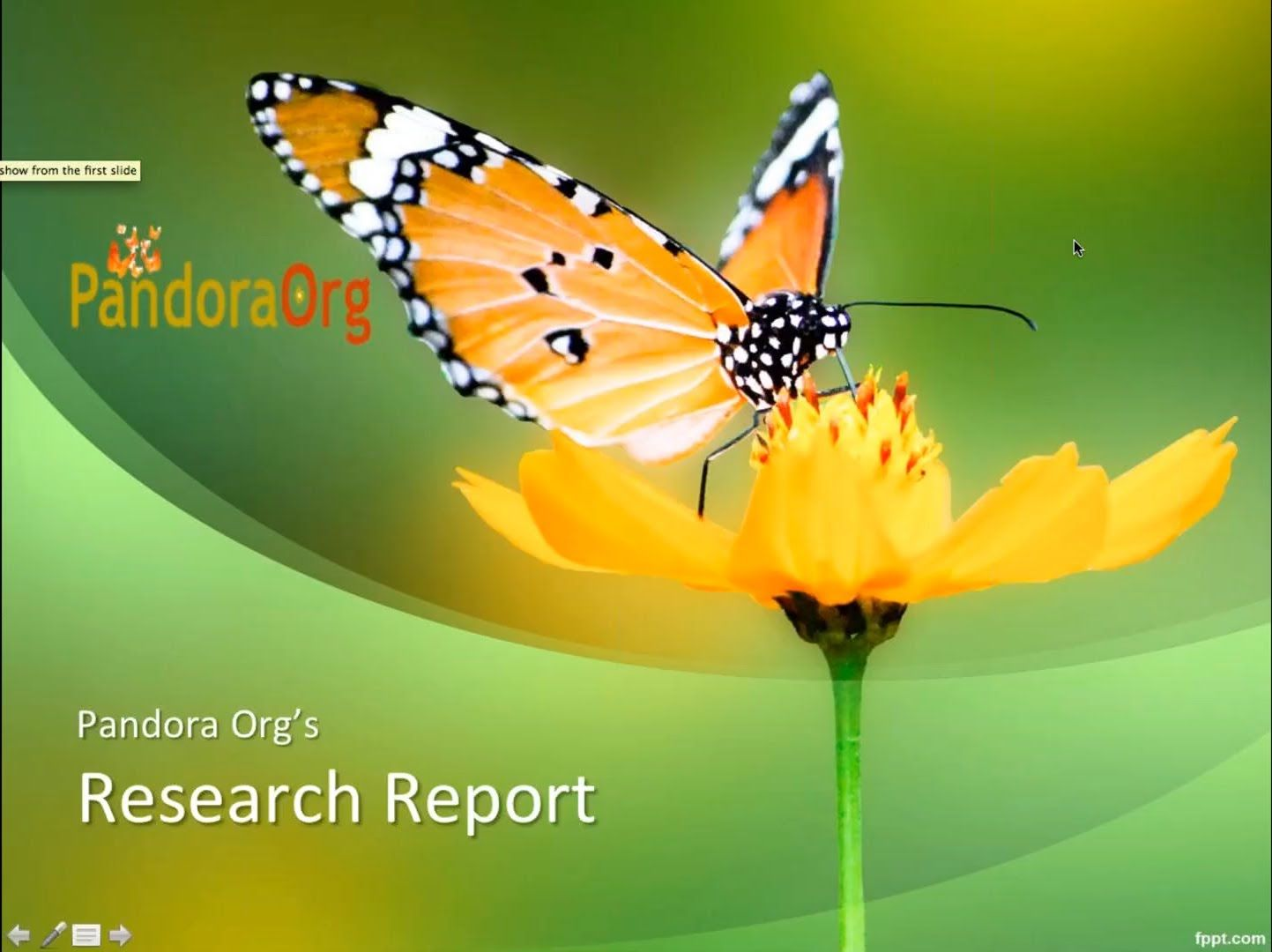 Pandora Research Report Jarred Younger