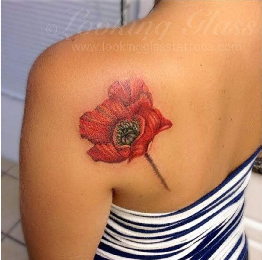 Realistic poppy tattoo by amber opal looking glass