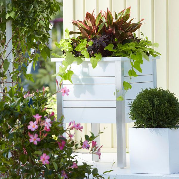 Indoor Planter Box Ideas: Indoor-Outdoor Planters These Pine-and-plywood Planters