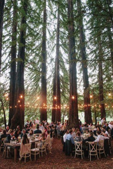 Forest Theme Wedding Reception Tables Decor