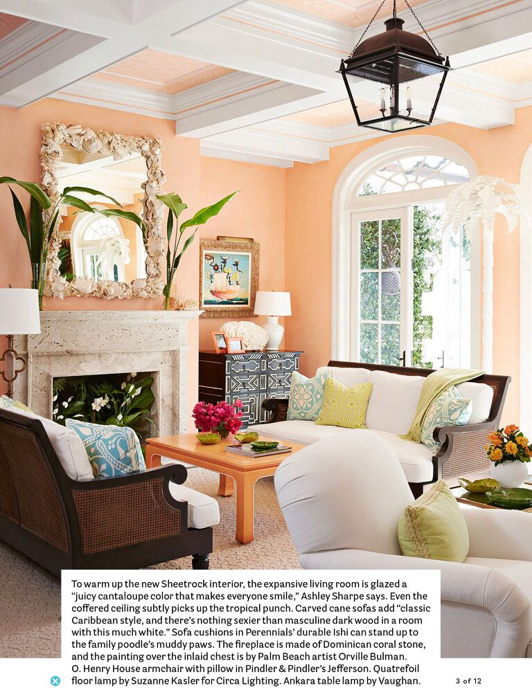 Apricot Color Living Room