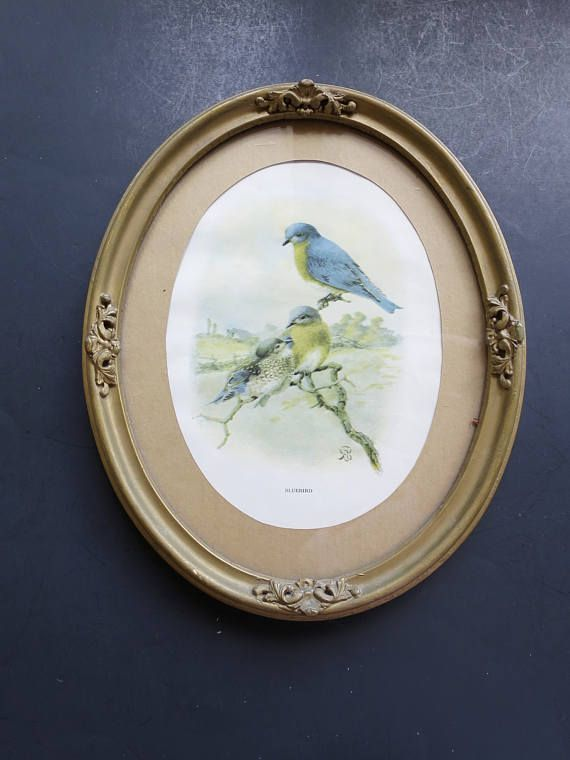 Vintage Blue Birds Picture French Oval Gold Finish Frame
