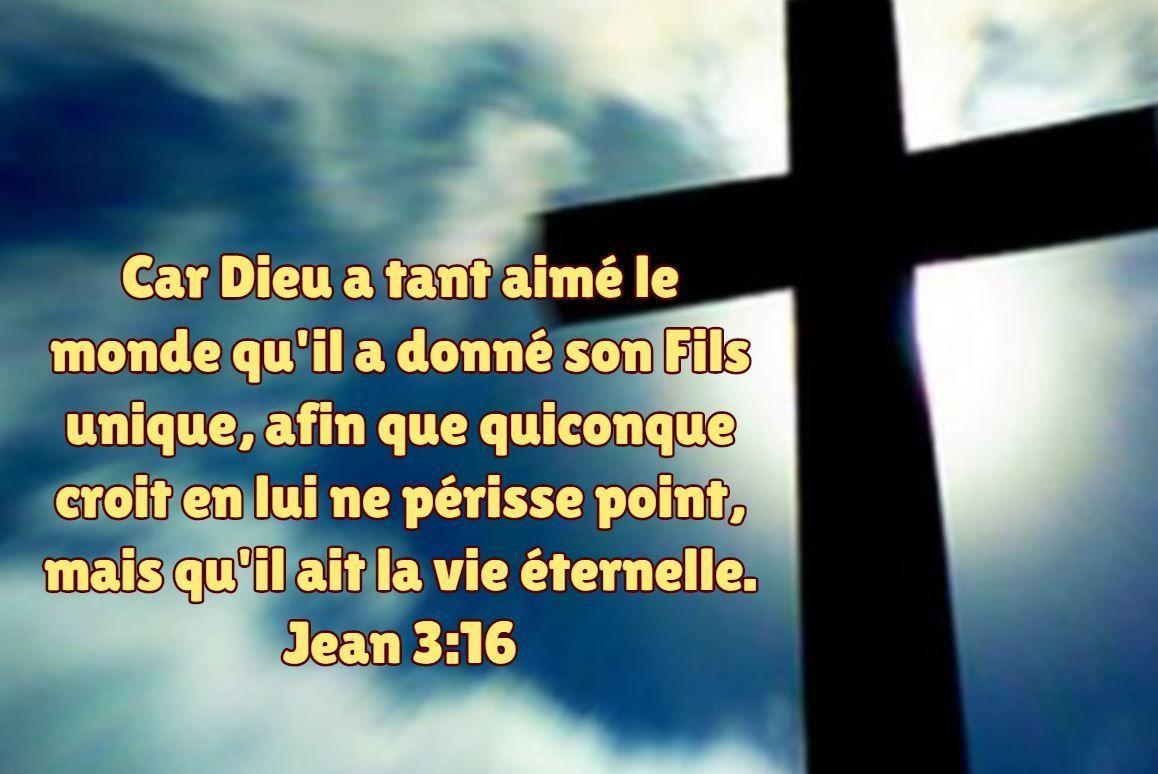 Car Dieu a tant aimé le monde qu'il a donné son Fils unique, afin que  quiconque croit en lui ne périsse point, mais qu'il ait la… | Fils unique,  Jean 3 16,