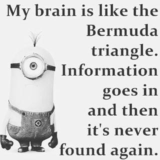 My Brain Is Like The Bermuda Triangle Minion Minions Minion Quotes Funny  Instagram Quotes Funny Minion
