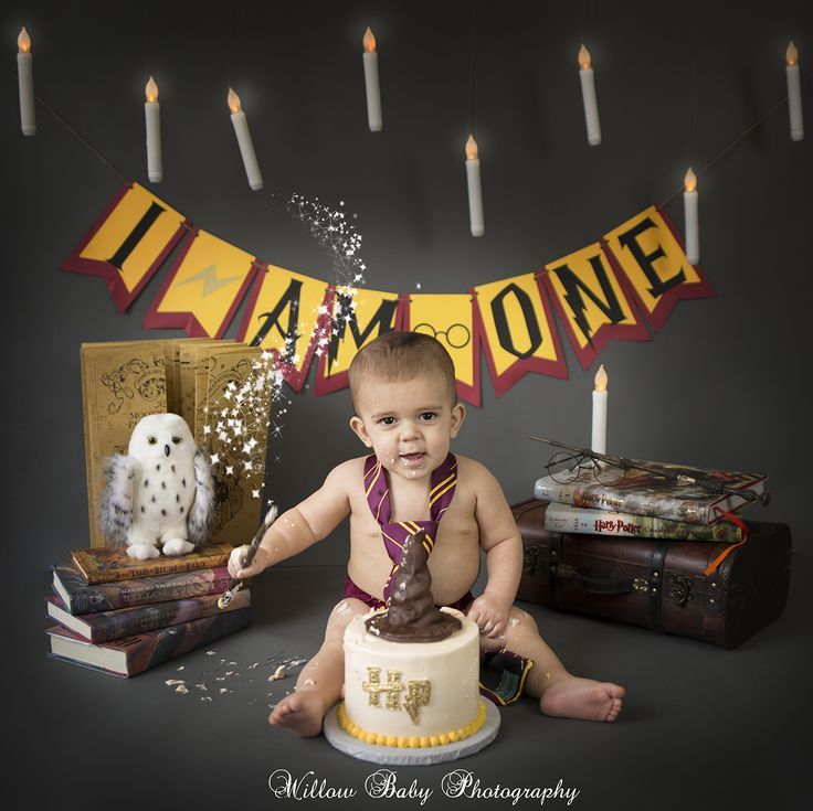 Six Months Baby Boy 1st Birthday Party Harry Potter Birthday Party Harry Potter Baby
