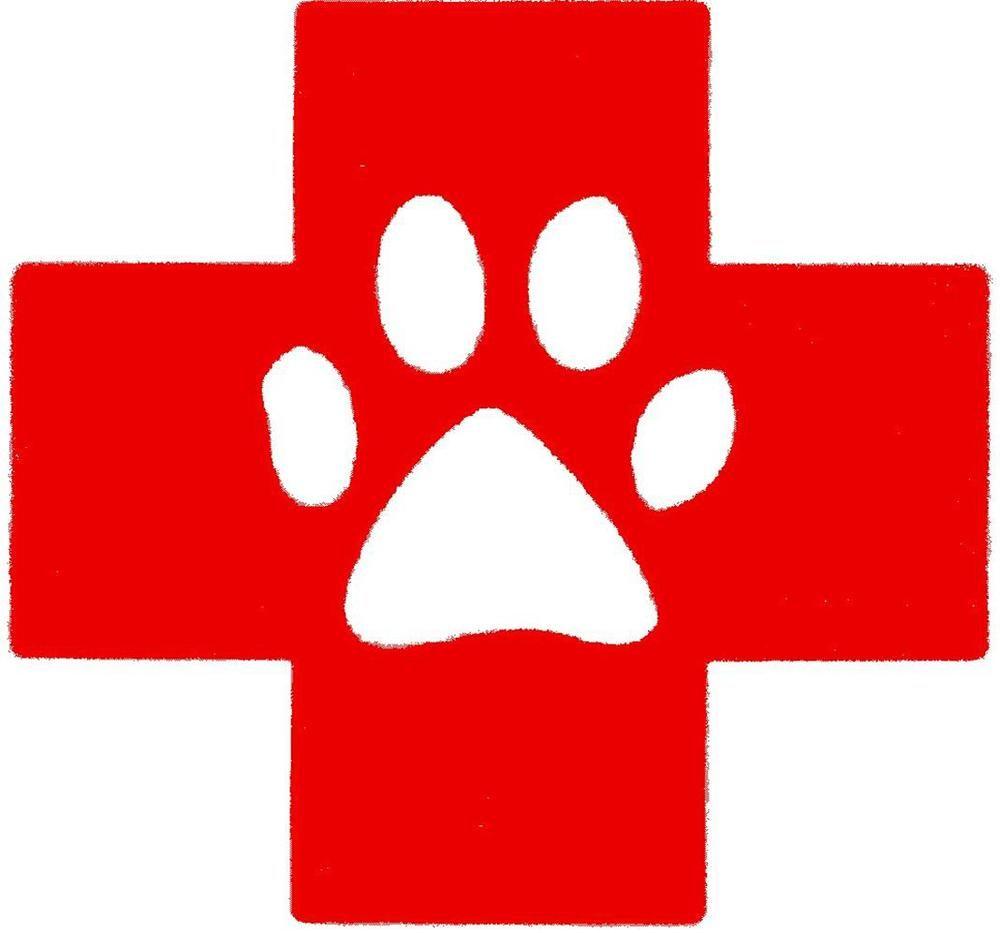 15+ Dutchess county animal hospital ideas
