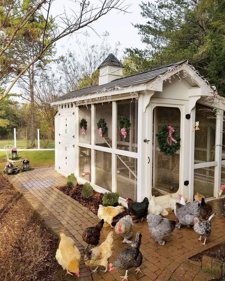 Fantastic Chicken Coops 2021 Designs Free Plans Ideas Family Food Garden Chicken Coop Coop Design Backyard Chicken Farming