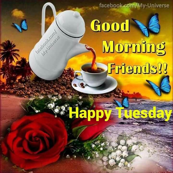 Good Morning Friends Happy Tuesday Tuesday Quotes Good Morning Good Morning Friends Good Morning