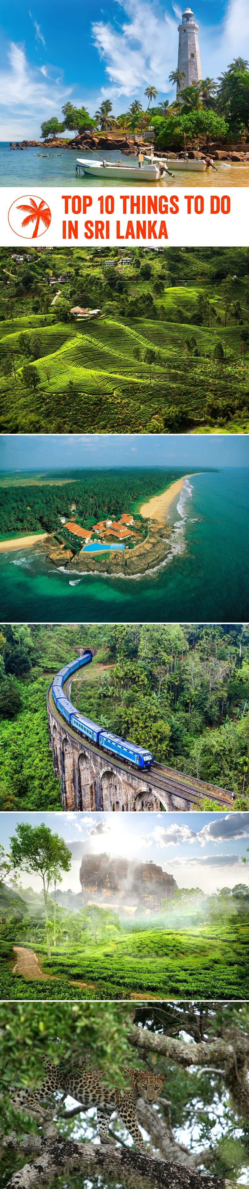 Top 10 things to do in srilanka (With images) Things to