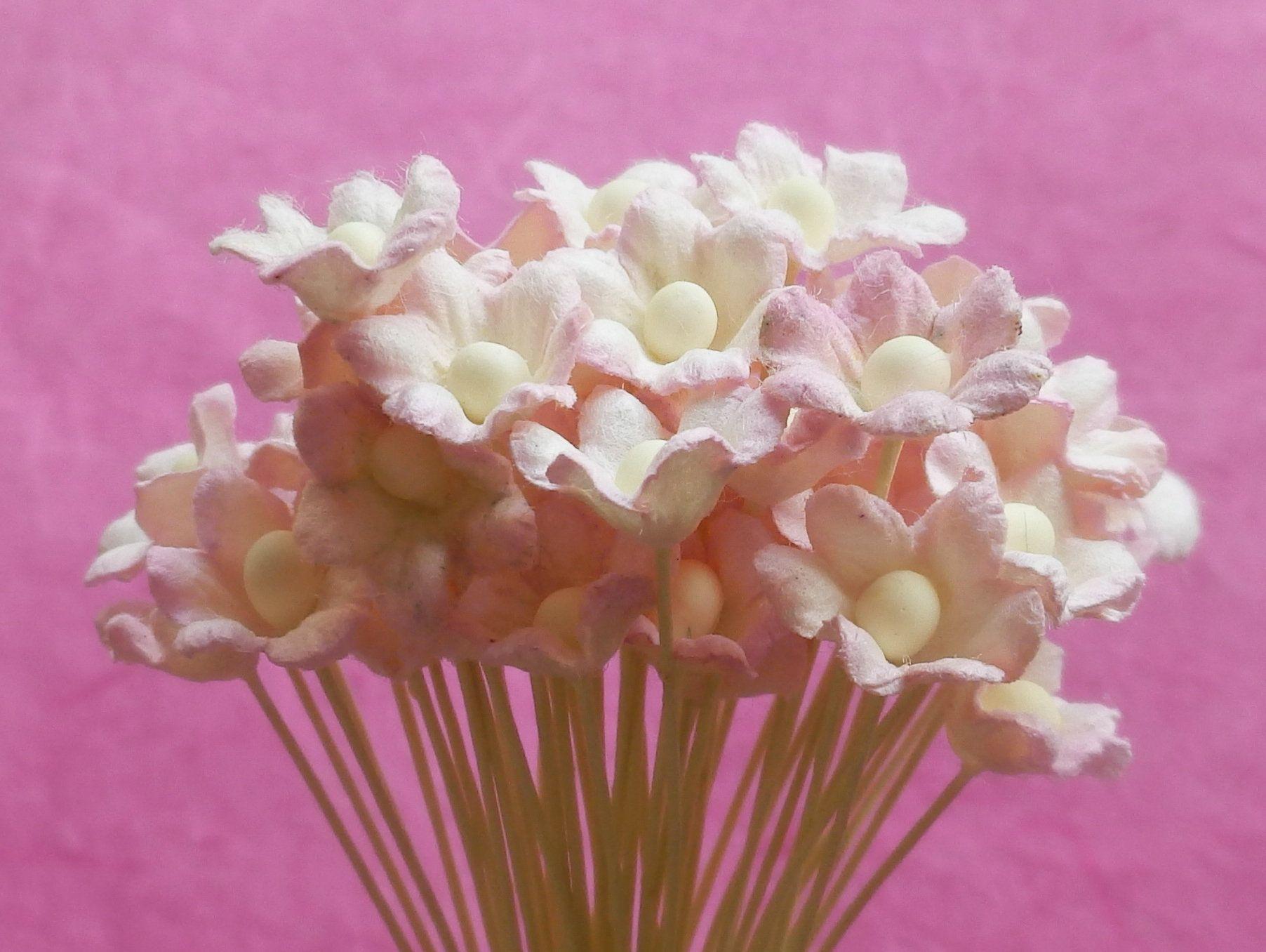 100 Paper Cherry Blossoms Handmade Mulberry Paper Miniature