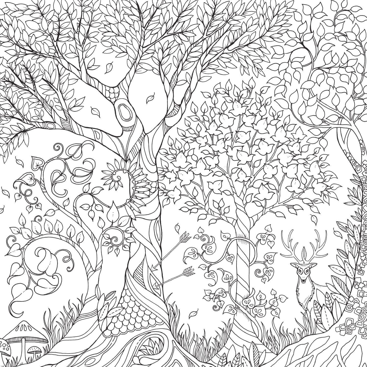 El Bosque Encantado / mtm editores | Puertas del castillo, Bosque ...