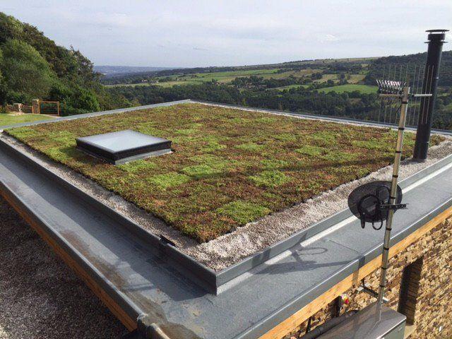 Grufekit Sedum Modular Roof Tile 1m Approx 4 Roofinglines Green Roof Benefits Living Green Roof Green Roof