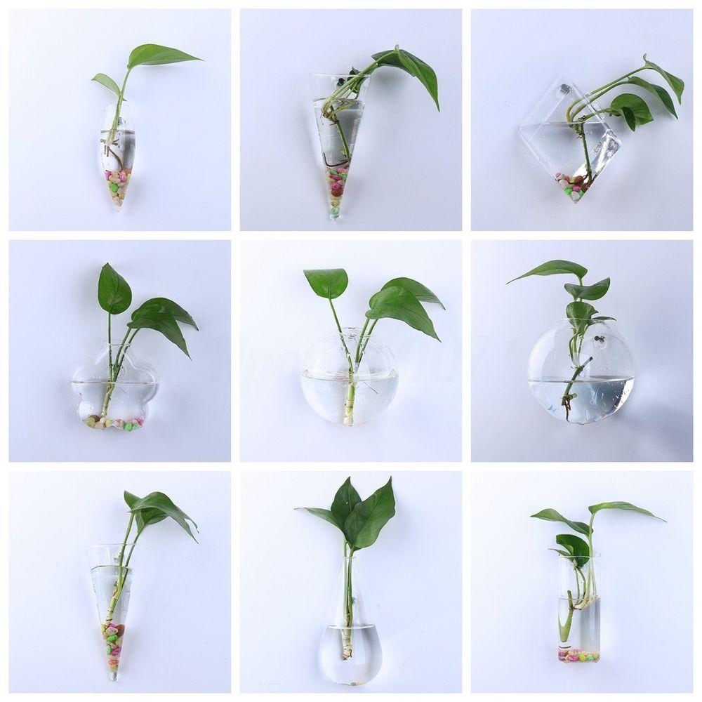 Glass Planter Air Plant Terrarium Flower Pots Wall Hanging Garde