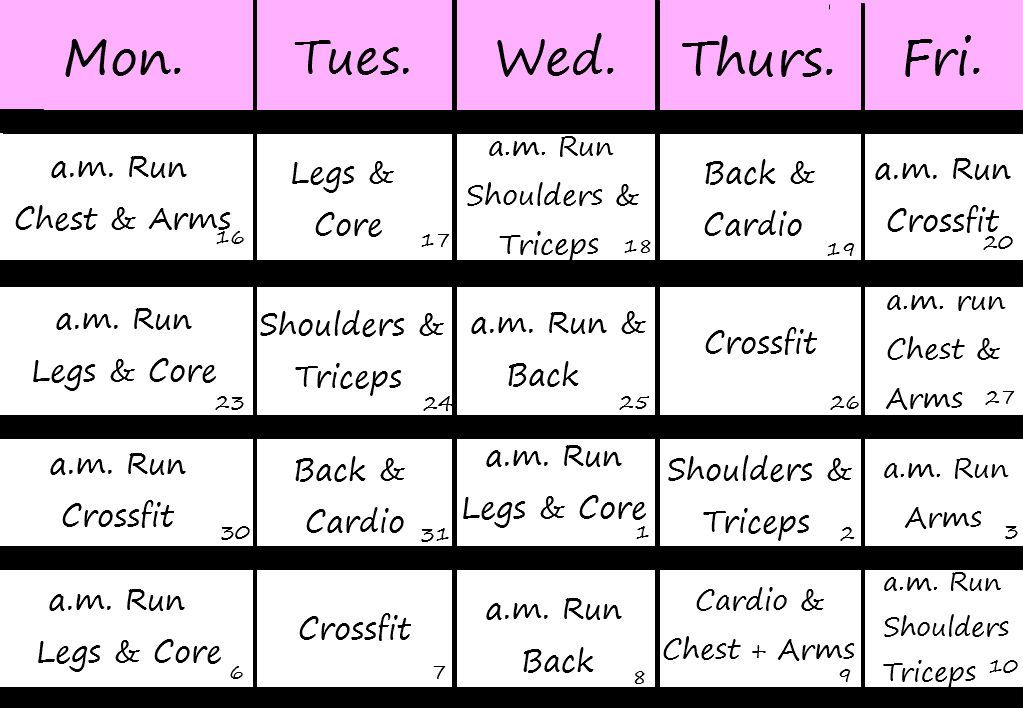 6 week workout plan to build muscle