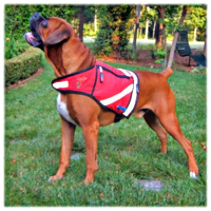 PooBoss Reflective Dog Vest in 2020 Dog vest, Dog gear, Dogs