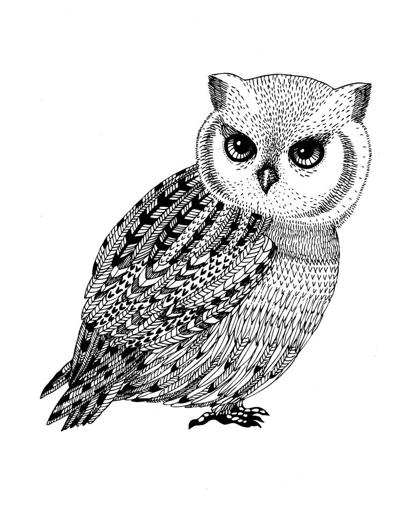 раскраски антистресс совы: 14 тыс изображений найдено в ...