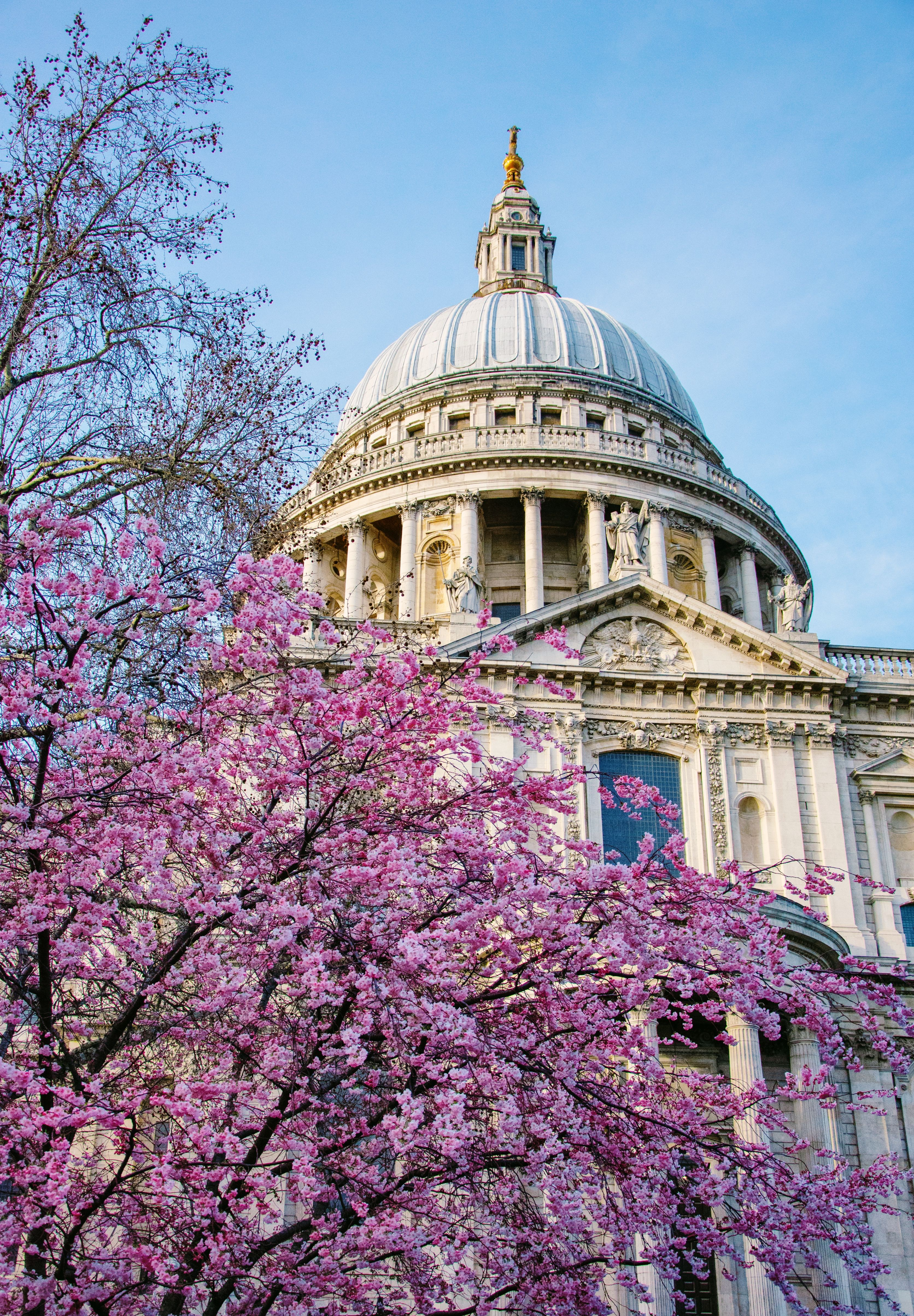 London Photography Regents Park Cherry Blossoms England Etsy London Photography London Photos Travel Photos