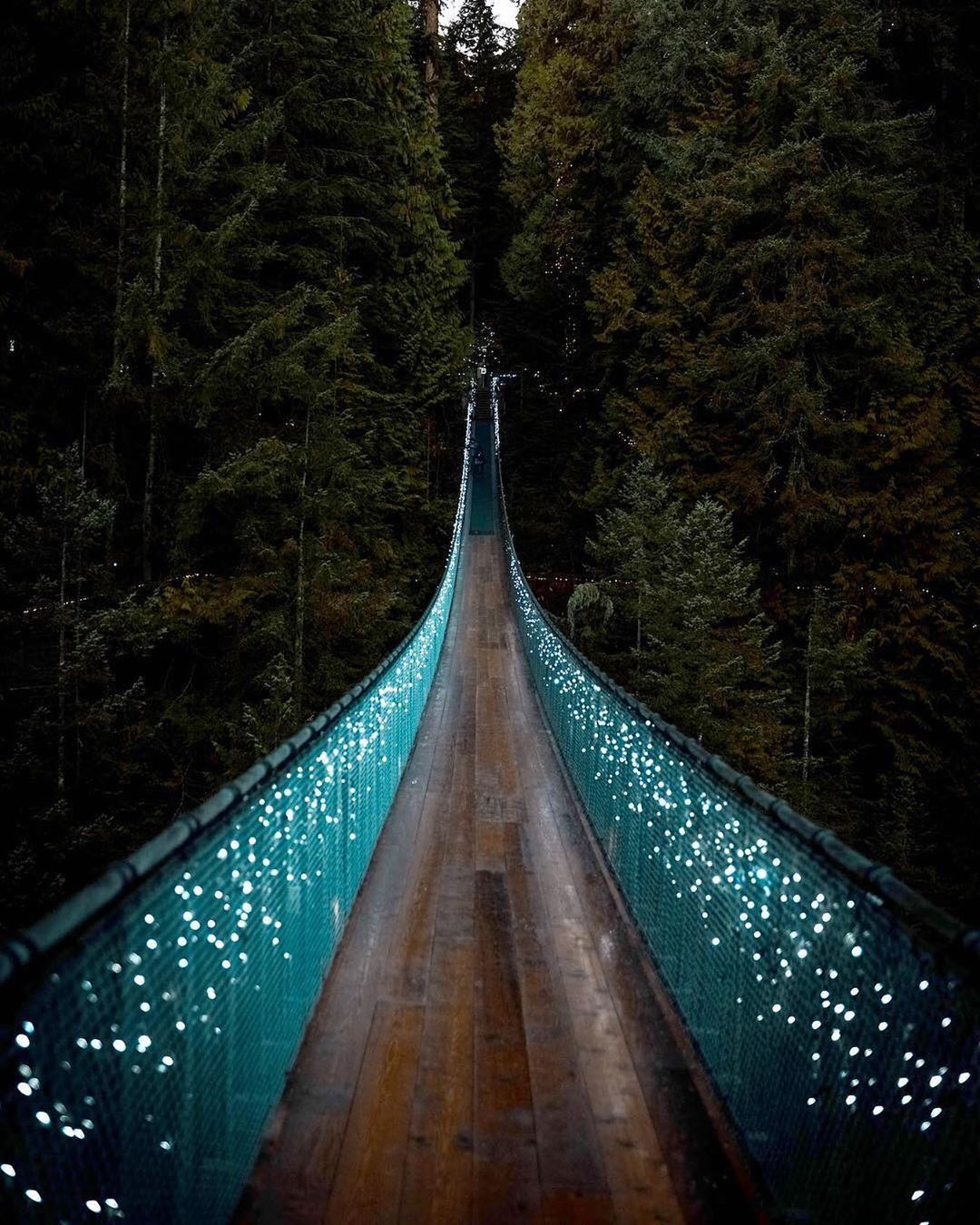 "Tour Canada 🇨🇦 on Instagram "" Capilano Suspension Bridge"