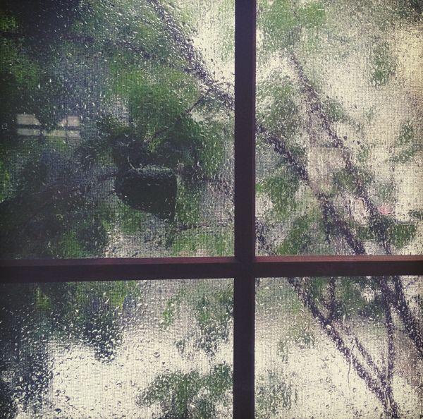Rain Outside The Windowpane Rain Window Standing In The Rain Rain Rain Come Again