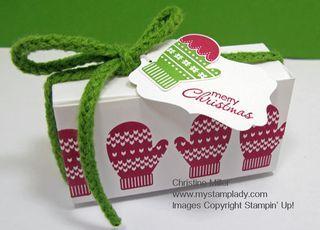 Make-A-Mitten-Box www.mystamplady.com
