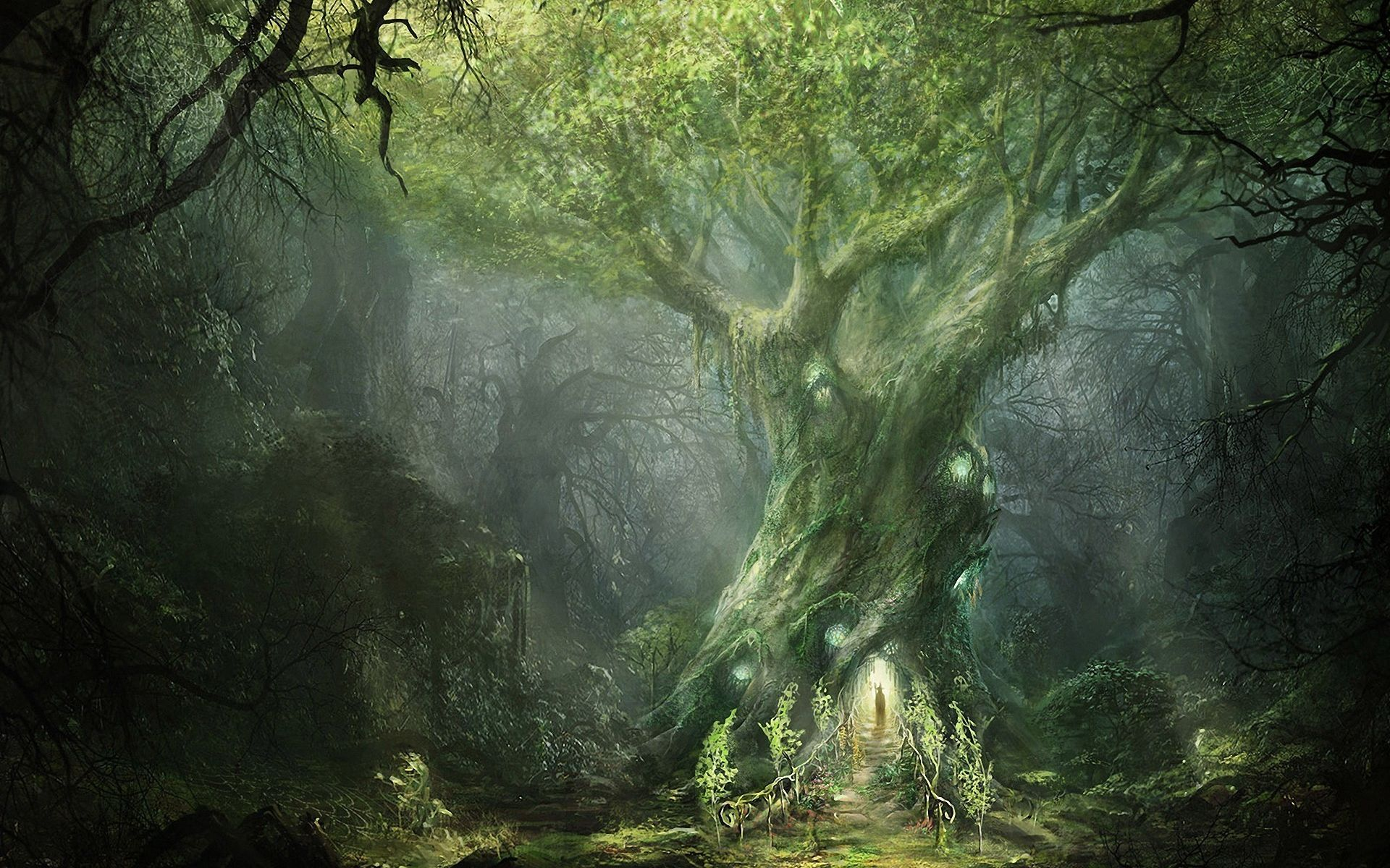 Fantasy Forest big twisted tree with surrounding light