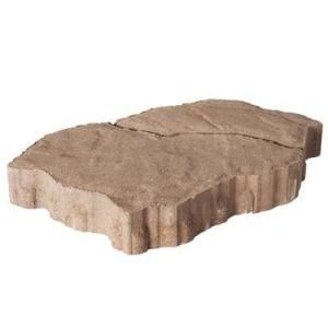ISO stepping stones for the north side of our house.  These are a possibility