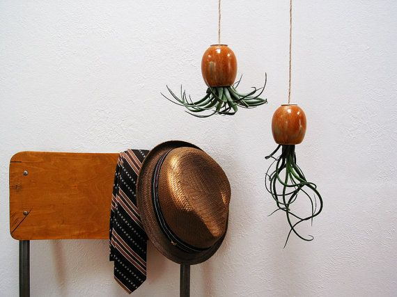 Hanging Air Plant Pod tm  Red Brown Gold by mudpuppy on Etsy, $32.00