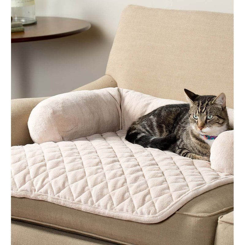 Chaise Pet Bolster Kingsley Pets Mob 237 Lia Do Gato