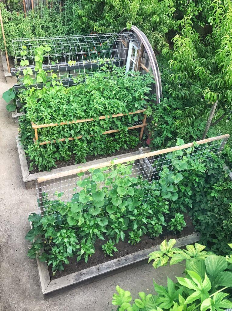 urban farmstead garten pinterest huerto huerta und jardiner a. Black Bedroom Furniture Sets. Home Design Ideas