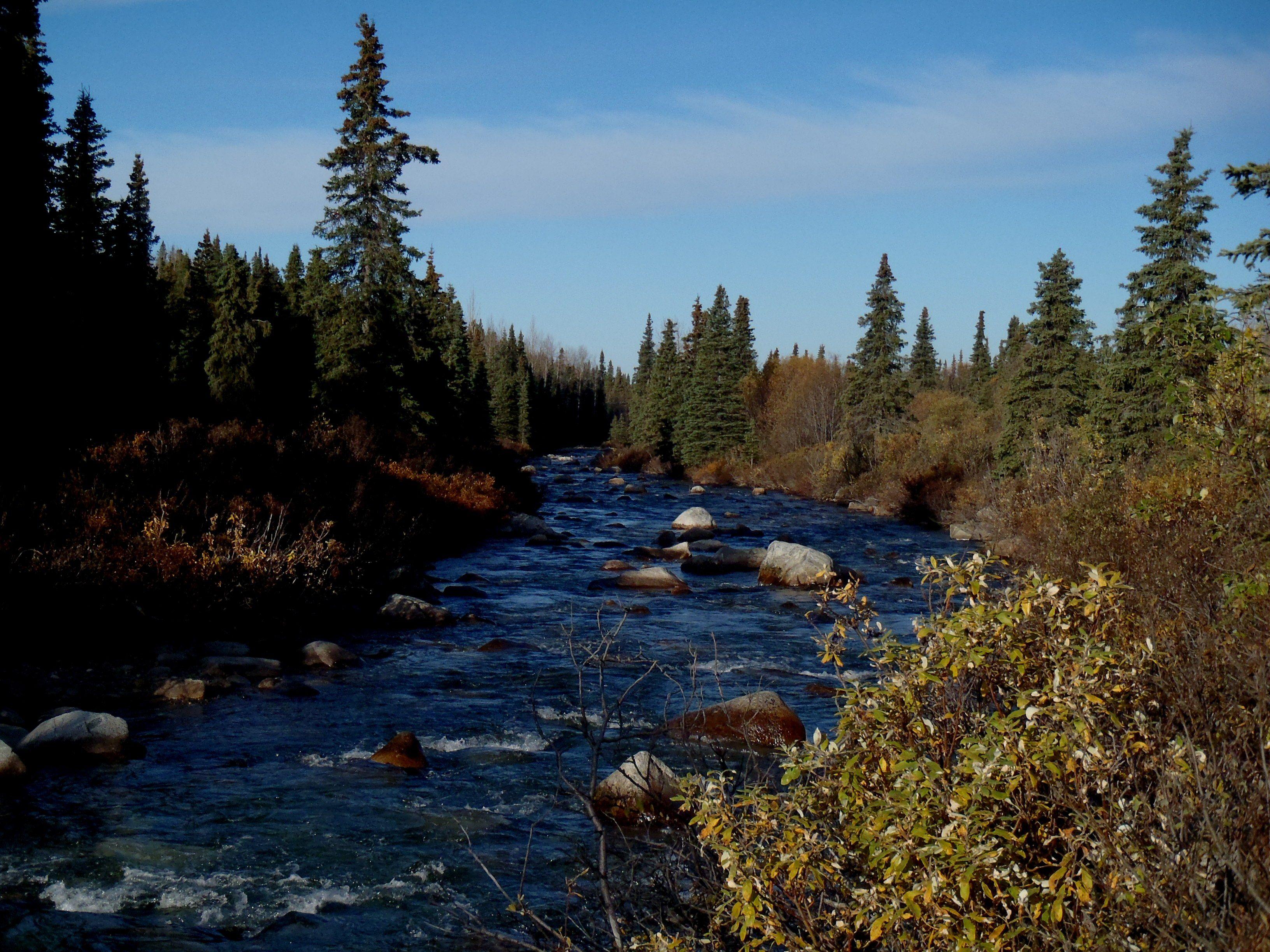 Willow creek alaska pinterest alaska for Lodge at willow creek