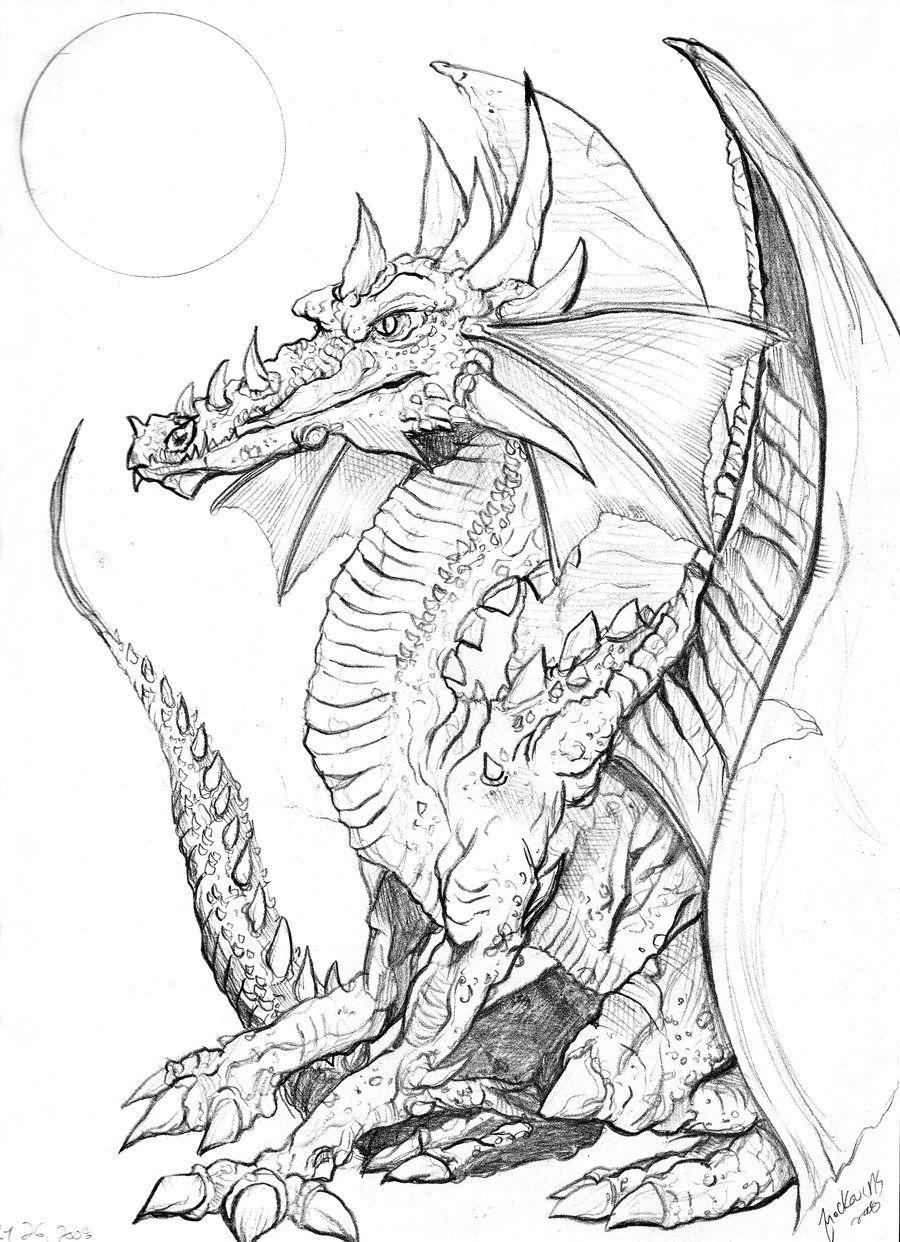 Dragon sketch by NickMockoviak.deviantart.com on @deviantART