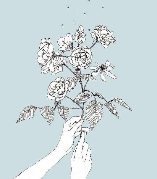 台風が近いせいか ものすごい湿気と間断ないスコール 背景に爽やかな色をセレクト 素敵な週末をお過ごしください 過去絵 アレンジ Marispendrawing Illustration Drawing Botanical Botanicalart ドローイン 薔薇イラスト 花 イラスト バラ イラスト