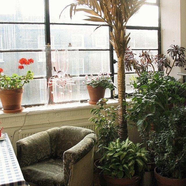Peter Jensens green and sunny studio from his instagram account - www.instagram.com/peterjensenltd