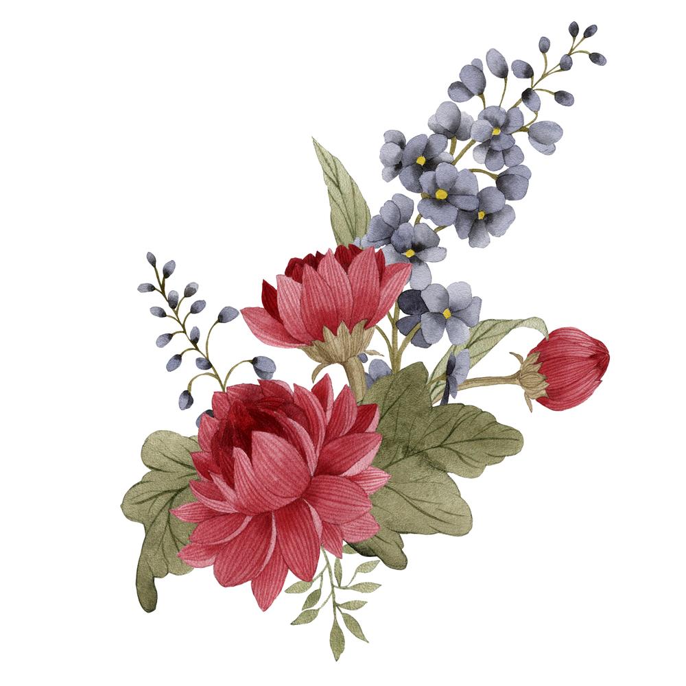 Botanical Flowers Flower Painting Flower Drawing