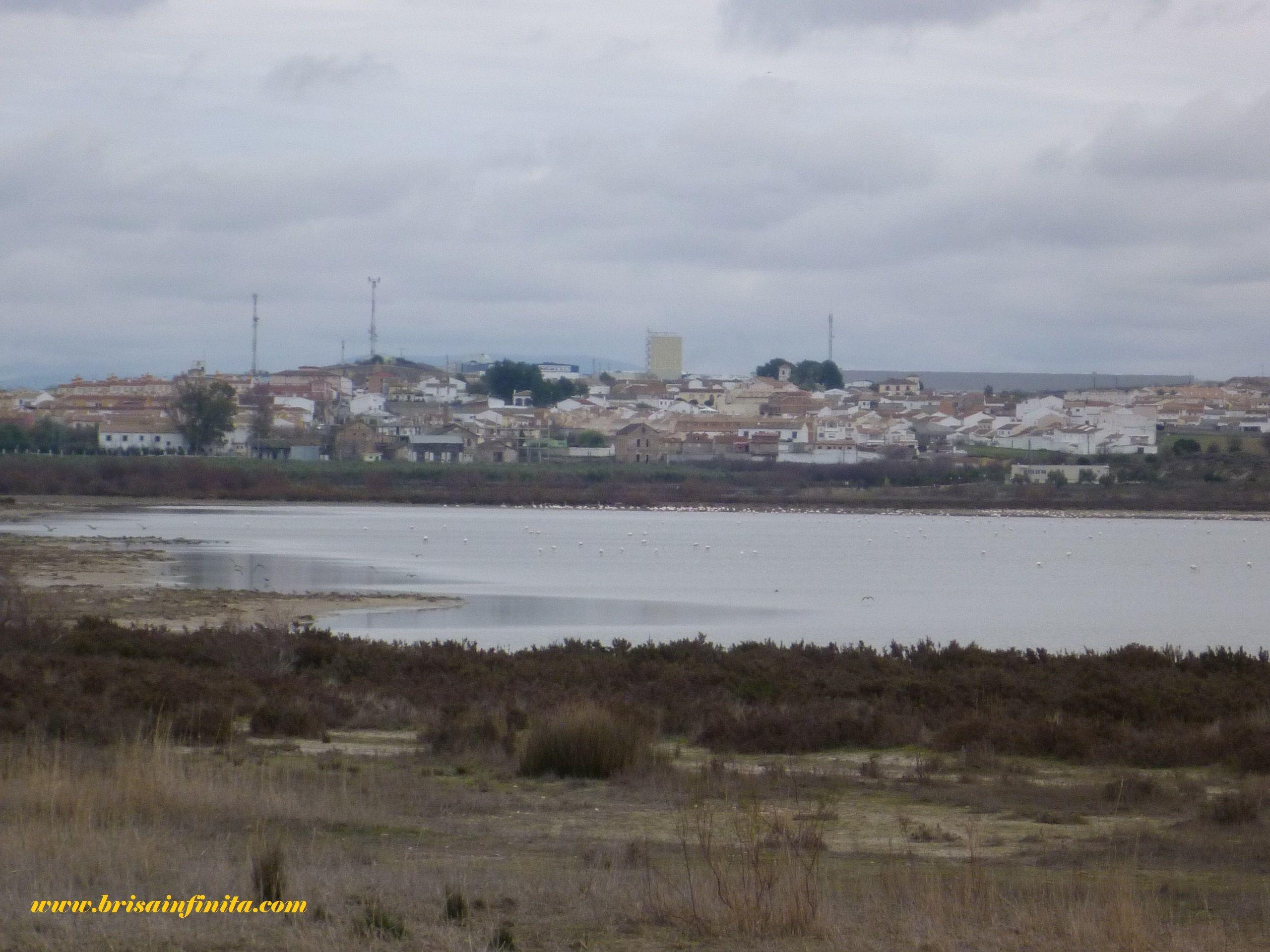 Fuente de Piedra y laguna.. (Málaga)