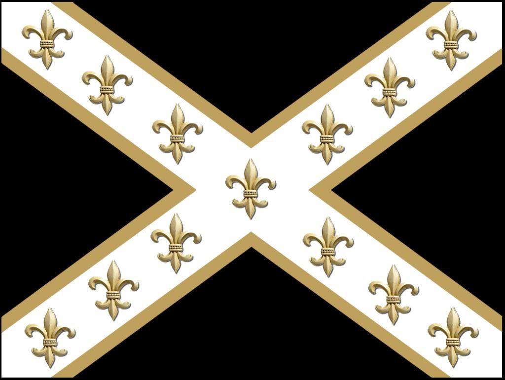 Saints Flag New Orleans Saints Saints Report Message
