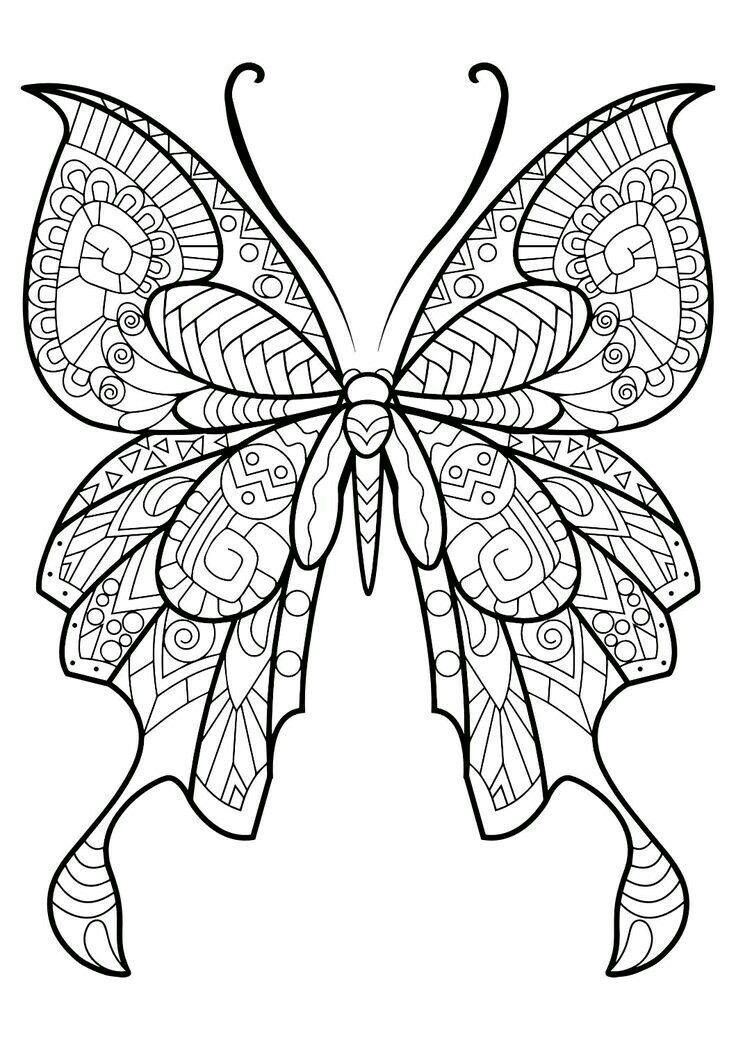 Fantastic Beautiful Butterfly coloring image | Mariposas | Pinterest ...