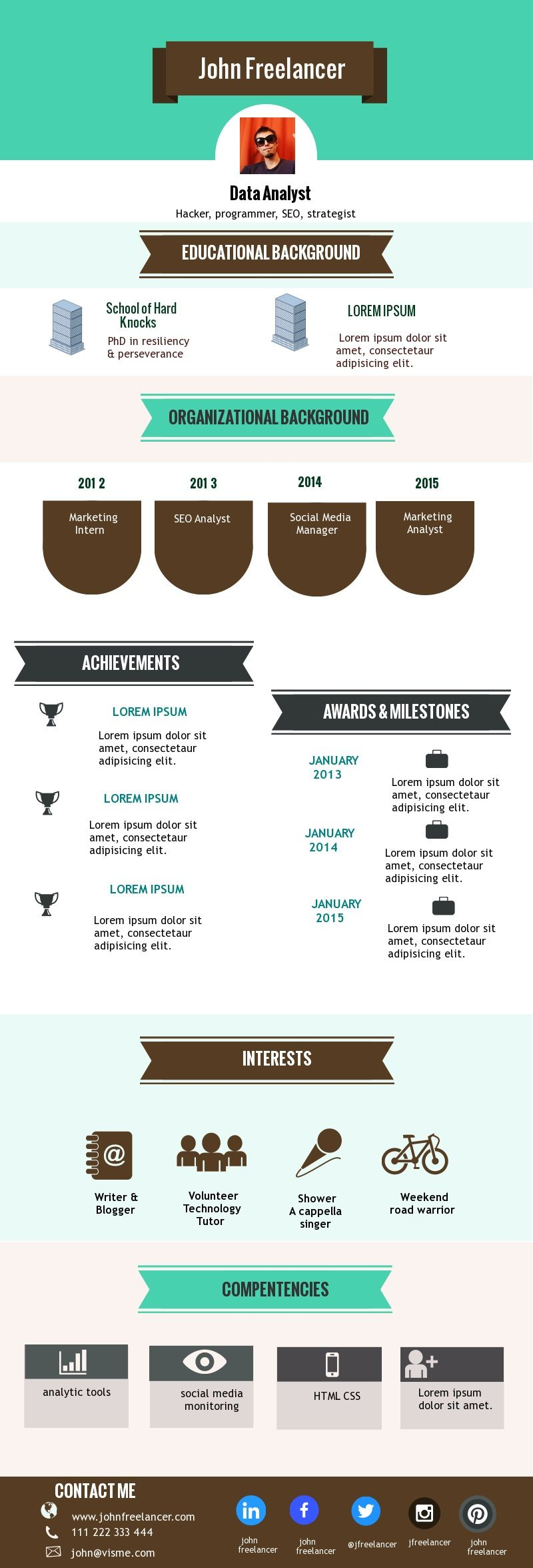 Sample Infographic Resume From Visme Template Infographic